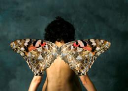 Concepción Escudero. Alas de mariposa. 1º Puesto. 11/2012