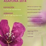 Asafona.2014.cartel