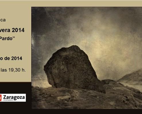 Salón de Primavera 2014. Tarjeta exposición.